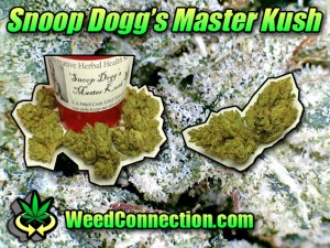 Snoop Dogg's Master Kush
