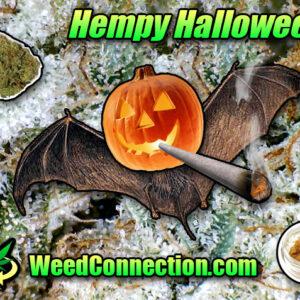 #Hempy #Halloweed @WeedConnection